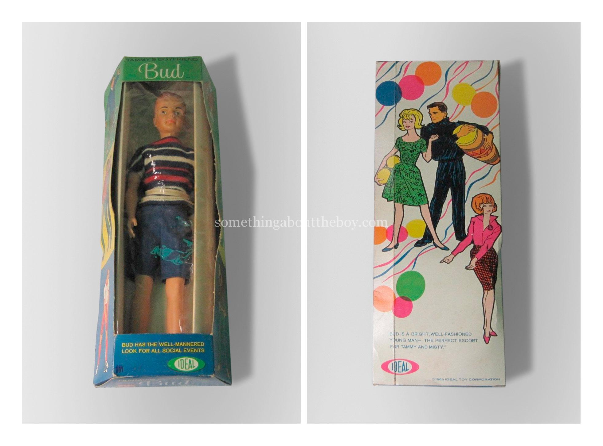 Tammy's Family Bud doll in original packaging