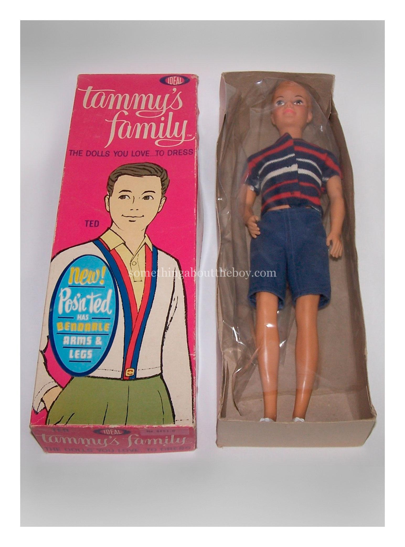 Tammy's Family Pos'n Ted doll in original packaging